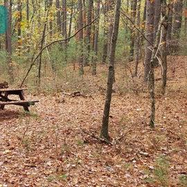 Site 12 Rocky Woods