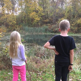 Trail Hikes and Ponds