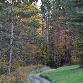 Trail in the Shadow Lake resort
