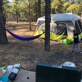 Spacious camp sites, plenty of room between neighbors