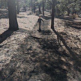Lavas Edge Trail ran along the back of our campsite.  Hike the trail for free entry into Sunset Crater National Monument
