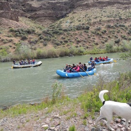 Rafters coming down the Owyhee River, below the dam.