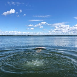 Diving into Lake Ontario from the Campground