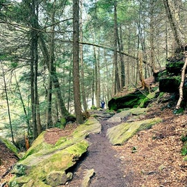 McConnell's Mill Walking Trail