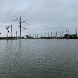 Near marina