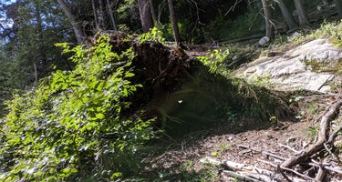 Harriman State Park/Beaver Pond
