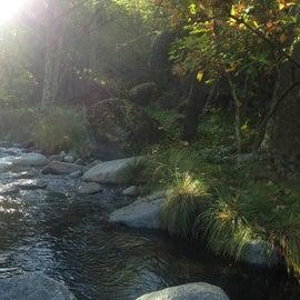Deer Creek, autumn