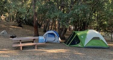 Fern Basin Campground
