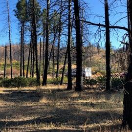 Camping area - dispersed