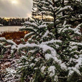 Hello winter wonderland!