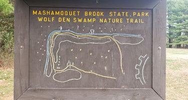 Wolf Den - Mashamoquet Brook State Park