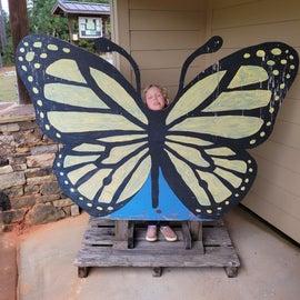 O Butterfly