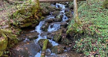 Low Gap Creek