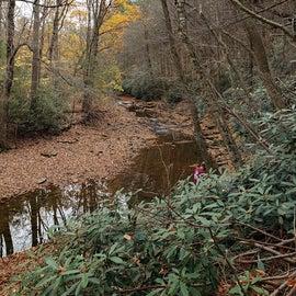 Hiking at Trough Creek by Rainbow Bridge