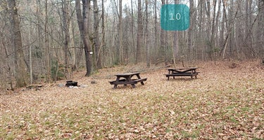 Federated Womens Club State Forest
