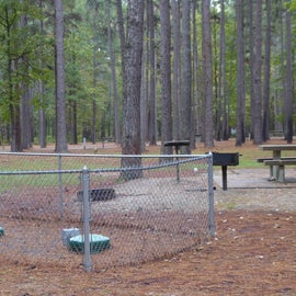D Campsite next to septic clean-out access