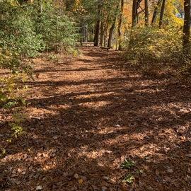 Level flat trails for hike and bike