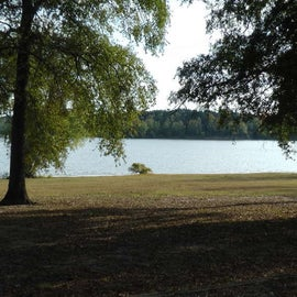 View of lake from site B 6