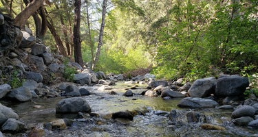 West Fork Trail Campground - Temporarily Closed