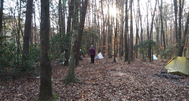 Virgin Falls State Natural Area - Primitive