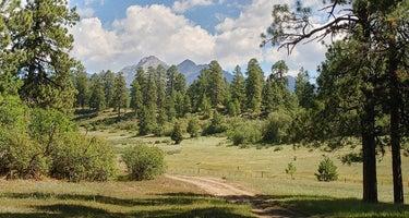 Turkey Springs Campground