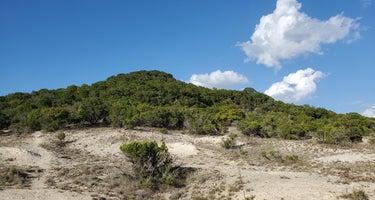 Dana Peak