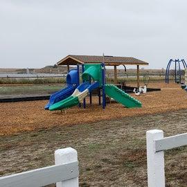 Clean, fresh, varied playground