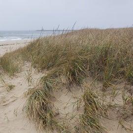 Long, sandy beach