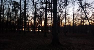 Cypress-Black Bayou Rec Area