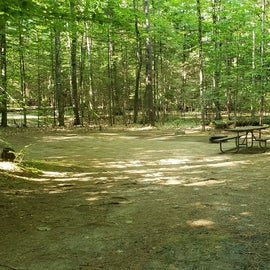 56 Campton Campground, WMNF