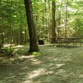 57 Campton Campground, WMNF