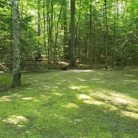 49 Campton Campground, WMNF