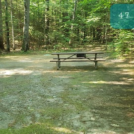 47 Campton Campground, WMNF