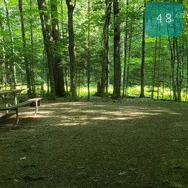 48 Campton Campground, WMNF