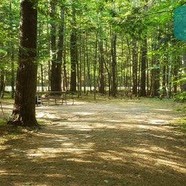 34 Campton Campground, WMNF