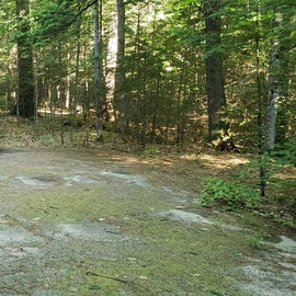 35 Campton Campground, WMNF