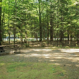 38 Campton Campground, WMNF
