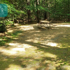 39 Campton Campground, WMNF