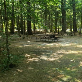 41 Campton Campground, WMNF