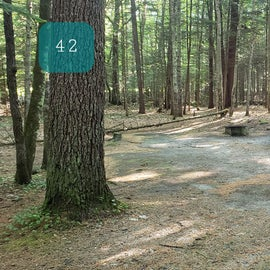 42 Campton Campground, WMNF