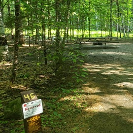 46 Campton Campground, WMNF