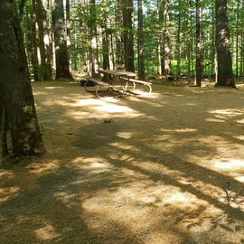 26 Campton Campground, WMNF