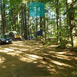 24 Campton Campground, WMNF
