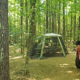 23 Campton Campground, WMNF