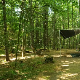 22 Campton Campground, WMNF