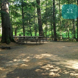 21 Campton Campground, WMNF