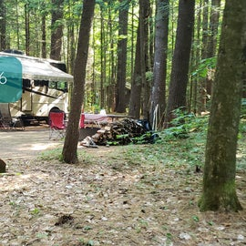 16 Campton Campground, WMNF