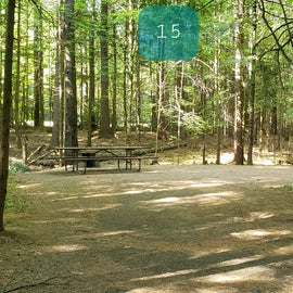15 Campton Campground, WMNF