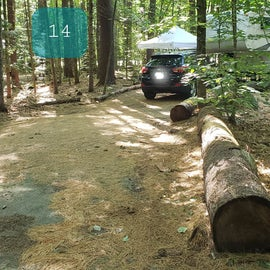 14 Campton Campground, WMNF
