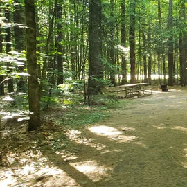 13 Campton Campground, WMNF